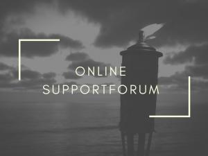 Berith Siegumfeldt kursus supportforum